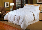 All Down and Down Alternative Comforters at the Lowest Price