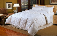 Down and Hypo-allergenic Down Alternative Comforters