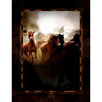 Lama Kasso Throw #342S, Stampeding Horses 56″x72″ Micro-Suede Throw Blanket