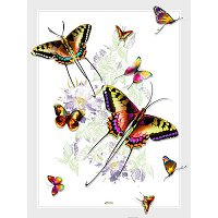 Lama Kasso Throw #406-T, Rainbow Colored Butterflies on a White Background 48″x63″ Satin Throw Blanket