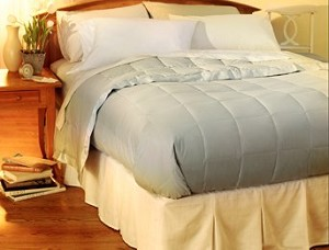 Pacific Coast&reg;<br />Down Blanket<br /><small>The luxury of down in a light weight blanket (Clover) (Full)</small>